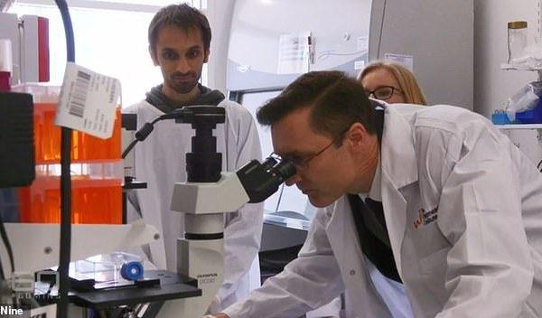 Injeksioni i një mjeku në Australi që po shëron plotësisht kancerin në gjak