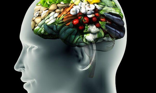 Zbulohet qendra e urisë në tru – shumë shpejt do të mundë të kyçet dhe shkyçet