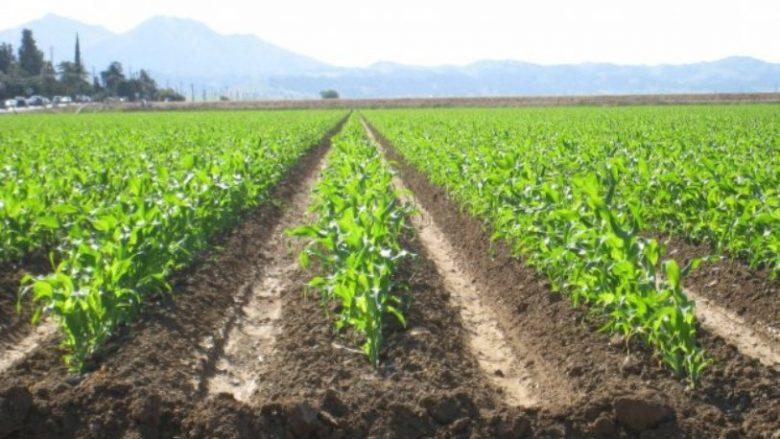 Vetëdije e ulët për sigurimet bujqësore në Maqedoni