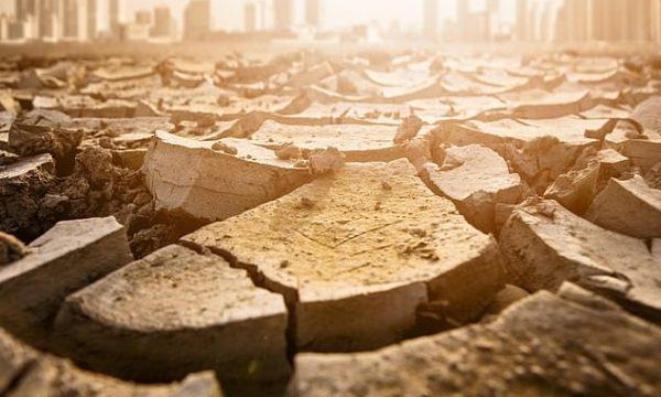 Njerëzimi mund të marrë fund në vitin 2050