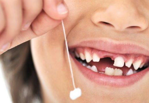 Kurrë mos i hidhni dhëmbët e qumështit të fëmijëve, ato shpëtojnë jetë