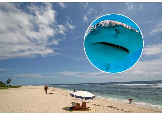 I gjetën dorën brenda peshkaqenit, gruaja e njeh nga unaza në gisht