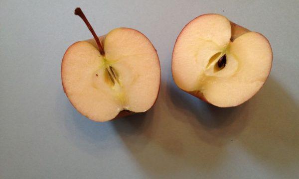 Dieta me mollë i humbni 4 kg për 5 ditë