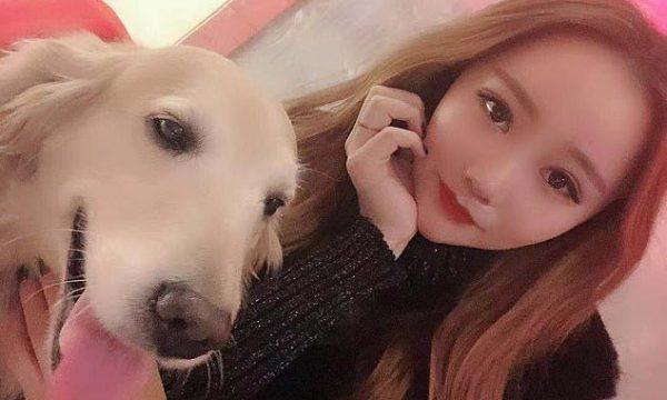 I ngordhi qeni nga kanceri, kinezja shpenzon 48 mijë euro për ta klonuar