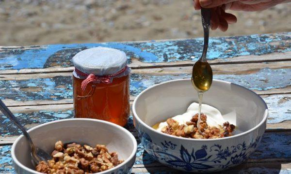 Sëmundjet të cilat i shërojnë mjalti dhe arrat: Më së shumti duhet t'i hani gjatë dimrit!