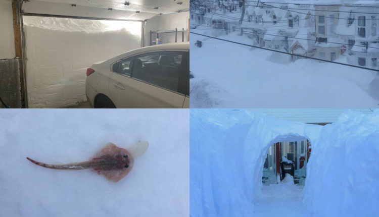 Bora e madhe bllokon Kanadën, mijëra shtëpi mbeten pa energji aktivizohet edhe ushtria (FOTO/VIDEO)