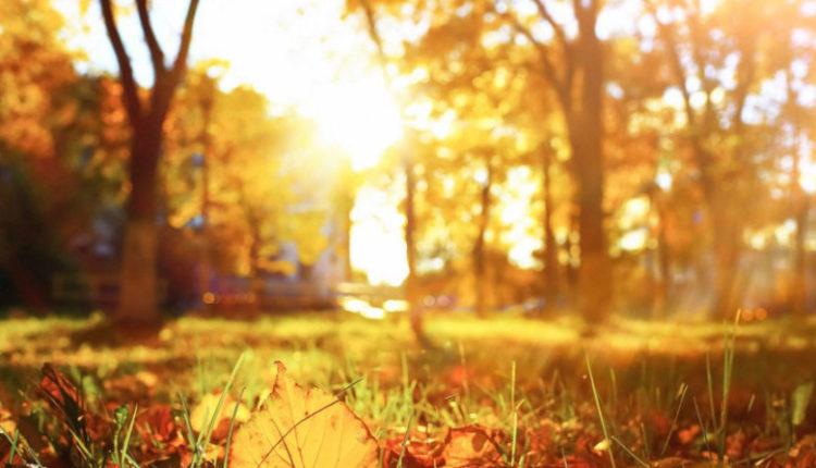 Mot me diell dhe i ngrohtë deri të mërkurën, nga e enjtja reshje të reja