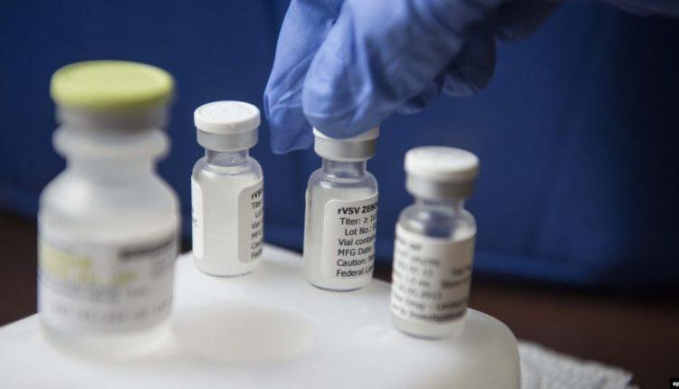 Shkencëtarët australianë nisin testimin e vaksinave potenciale për koronavirus