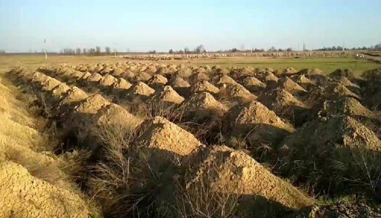 1462 të infektuar dhe 45 viktima nga Covid-19/ Qyteti ukrainas bën gati 600 varre, ndizen polemikat