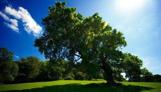 Moti me diell dhe vranësira mesatare, temperatura deri 33 gradë