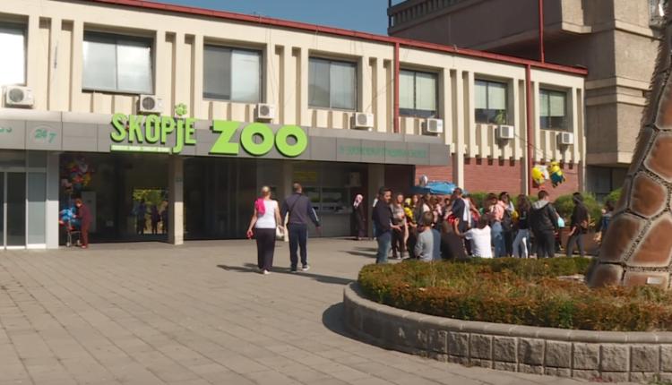 Kopshti Zoologjik në Shkup do të mbyll dyert nëse vizitorët nuk mbajnë maska
