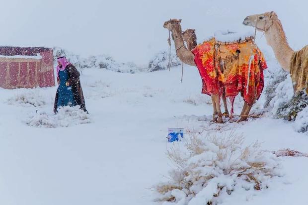Dëborë në shkretëtirën e Saharasë dhe në Arabinë Saudite
