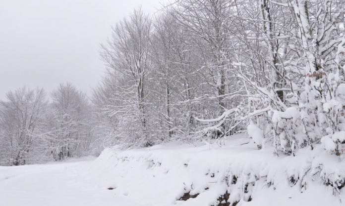 Reshjet vështirësojnë qarkullimin Bellanoc – Stançiq