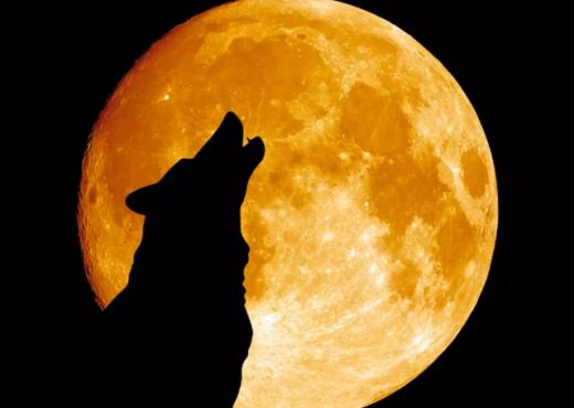 """Pak ditë nga """"Hëna e Plotë e Ujkut"""", astrologia shpjegon pse duhet të kemi kujdes"""