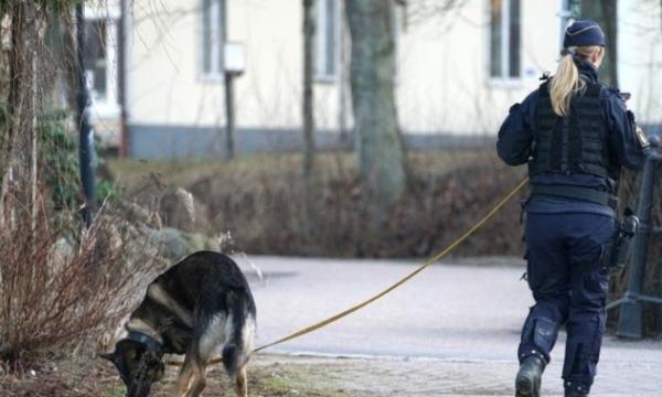 Sulm masiv me thikë në Suedi, dyshohet për terrorizëm