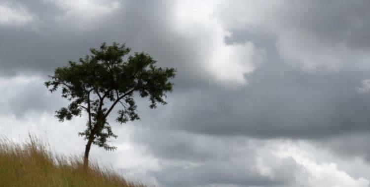 Moti do të jetë me vranësira dhe me reshje lokale të shiut