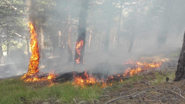 Shuhet zjarri në Galiçnik