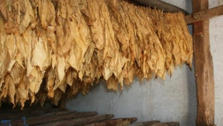 Propozim ligji për mbështetje financiare për prodhuesit e duhanit para Komisionit për bujqësi në Maqedoni