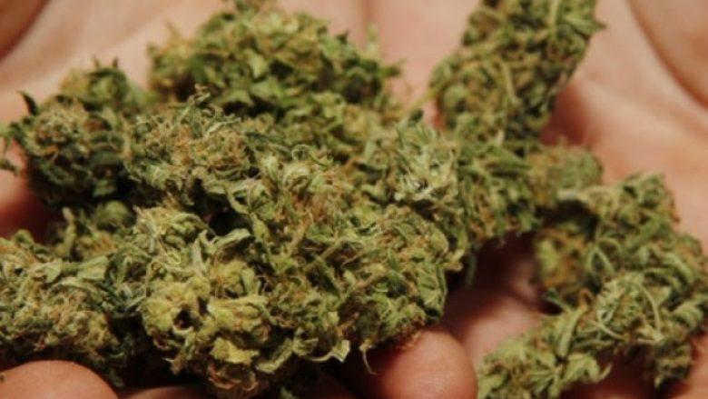 Zbulohen dy laboratori për prodhimin e marihuanës në Shkup